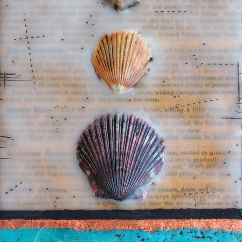 Shells & Words no. 5