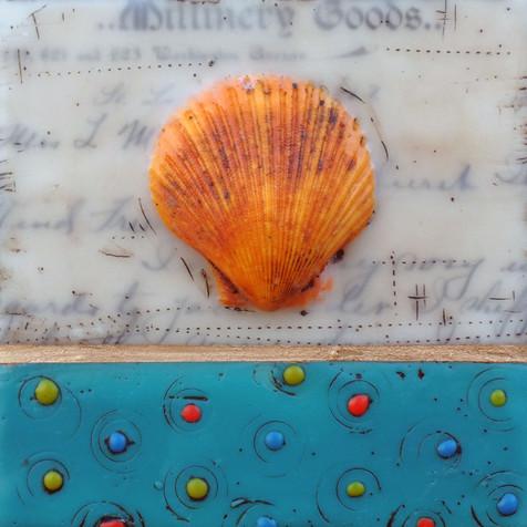 Shells & Words no. 1