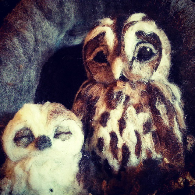 Two owls waiting for their new owner to arrive.jpg