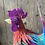 Thumbnail: Rainbow Rooster