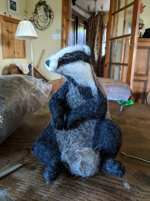 Brightlingsea Badger 14th and 15th March 2020