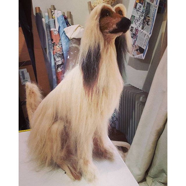 #afghanhound finished at last #needlefelting #fauxidermy #dog #afghan