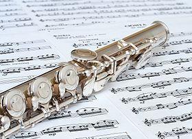 Flute Online Lesson (45min)