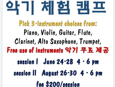 Can't decide which instrument to learn?