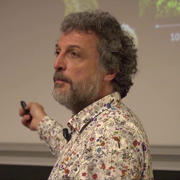 Prof. Olivier Dauchot