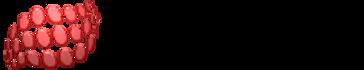 HKCIA Logo.png