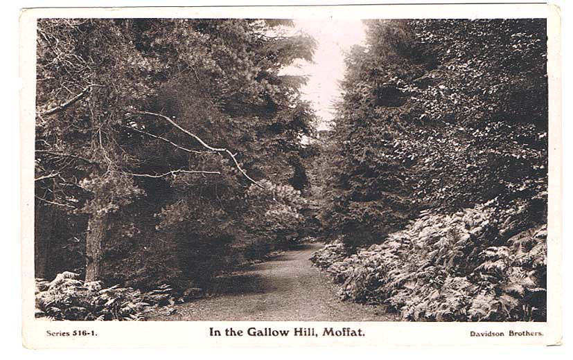 Gallow Hill Postcard