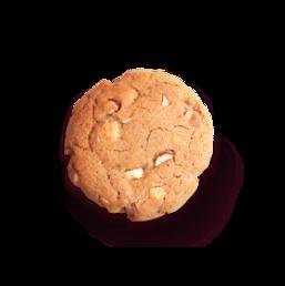 IMGS_web_cookie_macadamia.png