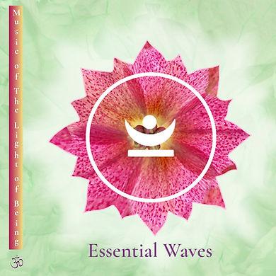 voorkant-ragas-essential waves.jpg