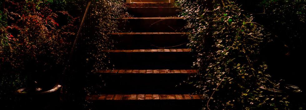 Redbay Twilight Pictures (7).jpg
