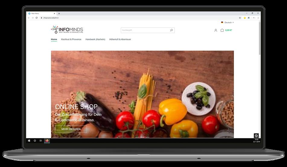 Laptop Screens_eCommerce.png