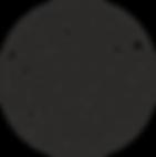 logo rip-Curl