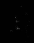 Screen Shot 2020-11-03 at 2.41.13 PM cop