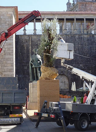 tree 42 DSC05783 alt.jpg
