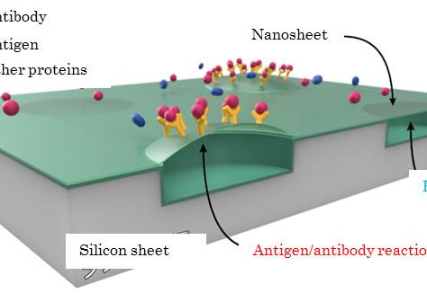 A semiconductor chip detects antigen concentrations at 1 parts per quadrillion molar mass