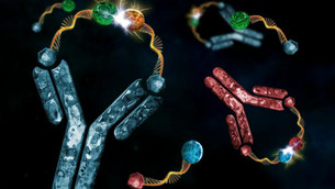 How to use antibodies to control chemical reactions