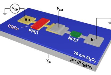 Breakthrough quantum-dot transistors create a flexible alternative to conventional electronics