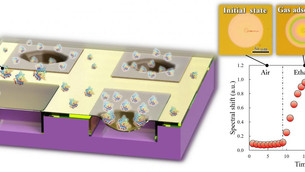 Semiconductor chip that detects exhaled gas with high sensitivity at room temperature