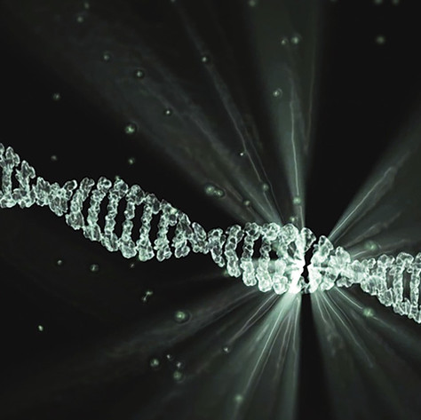 Enzymatic DNA synthesis sees the light