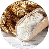 wheat protein.jpg 40x40.png