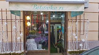 Botanika.rs izlog ulaz cvecara