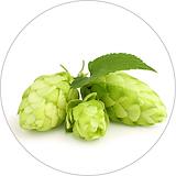 hops 40x40.png