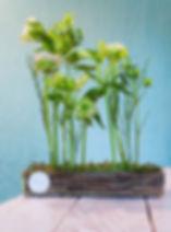 Buketi i aranžmani od svežeg cveća za za dekoraciju kancelarija rukovodilaca kompanije, konferencijskih sala, sala za prijem i drugih poslovnih prostorija.