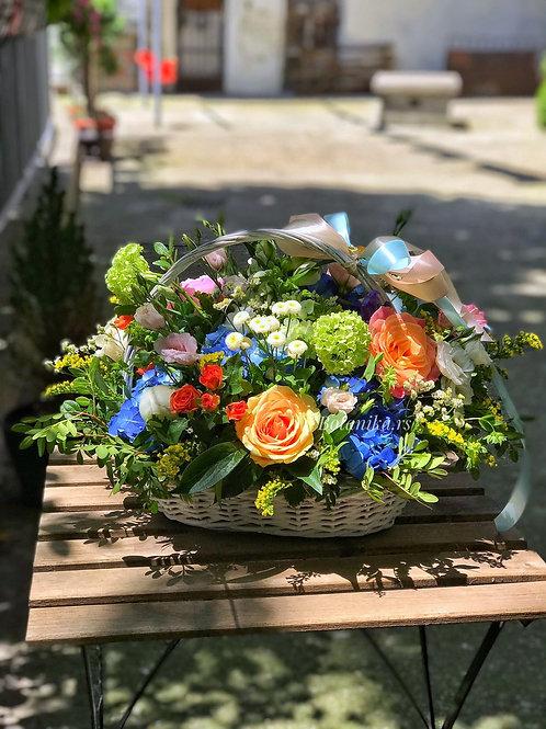 Flower Basket with seasonal flowers / Korpa sa sezonskim cvećem