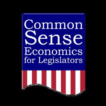 CSE for Legislators