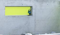 Wand für Garten - Gärten & Pools Sven Studer AG