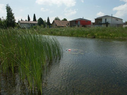 Teich - Gärten & Pools Sven Studer AG
