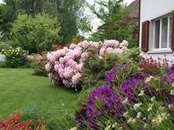 Blumenbeet - Gärten & Pools Sven Studer AG