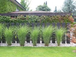 Pflanzen in Steinen - Gärten & Pools Sven Studer AG