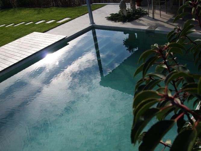 Bio Pool Bau- Bauen