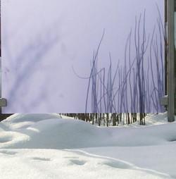 Gartensichtschutz - Gärten & Pools Sven Studer AG