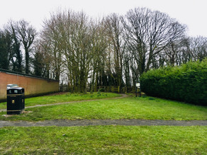 Land off Bramhall Drive Questionnaire