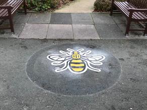 Bee Markings