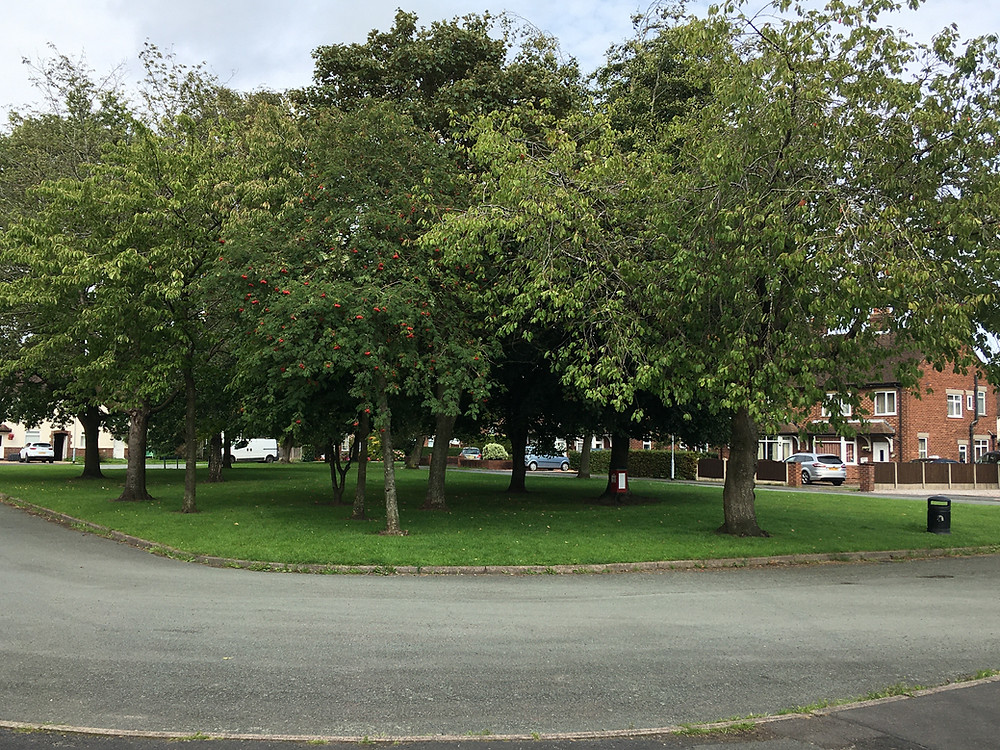 Photograph of Picton Square