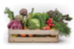 kilometro zero senza pesticidi consegna a domicilio tenuta frigenti orto frutta e verdura agricoltura bioloca