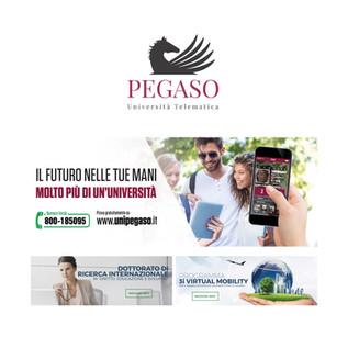 Università Telematica Pegaso - consulente marketing napoli - web marketing - web agency - giovanni marketing - analisi di mercato napoli