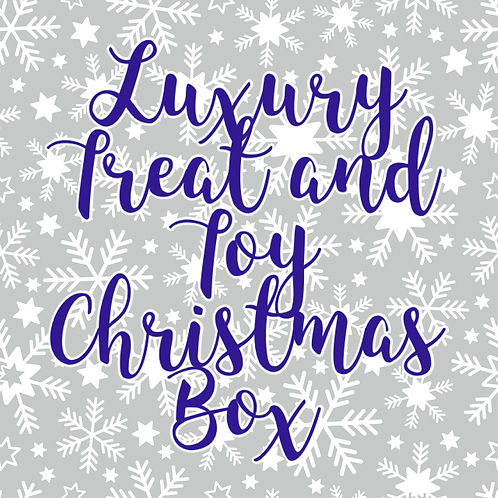 Luxury Treat & Toy Christmas Box