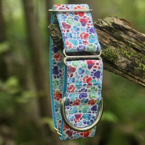 Rainbow Paws Bio-Canvas Collar