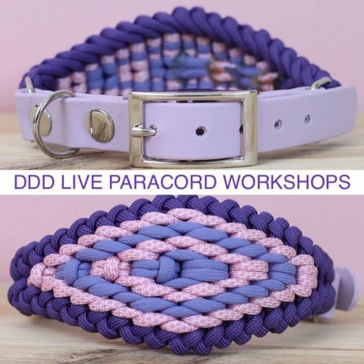 Live Workshop 12 - Hound Collar