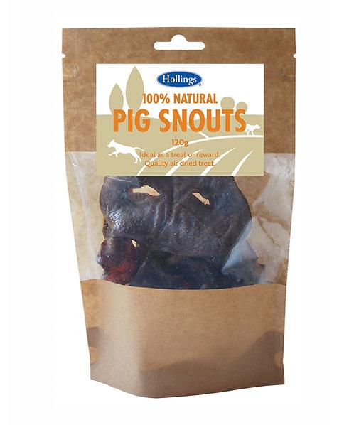 Hollings Pig Snouts