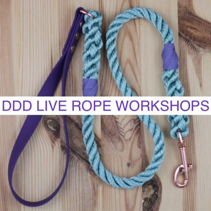 Live Workshop 11 - PPM Rope Lead