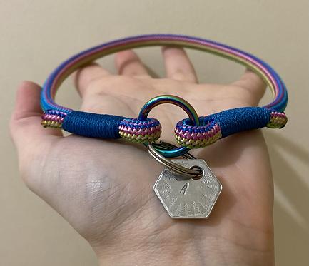 Rainbow ID Collars
