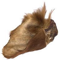 furry-cow-ear.jpg