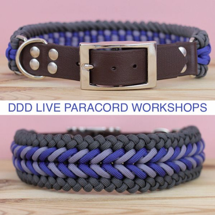 Live Workshop 10 - Spearhead Collar