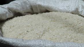 Vermehrung von Bohnen und Reis