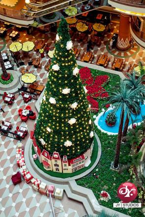 #christmas_tree #city_starrs